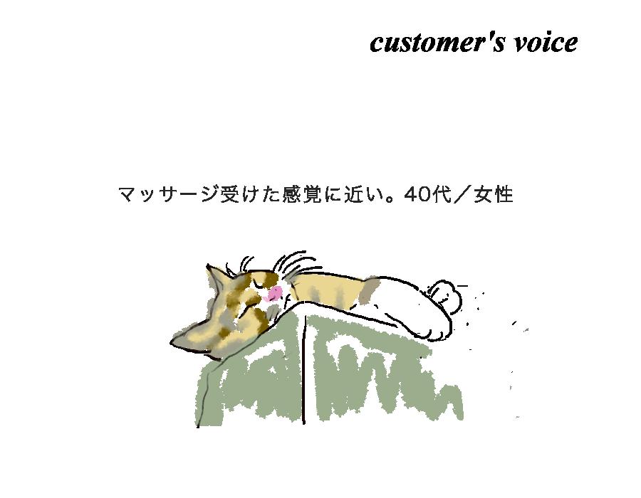 猫にゃー_201802