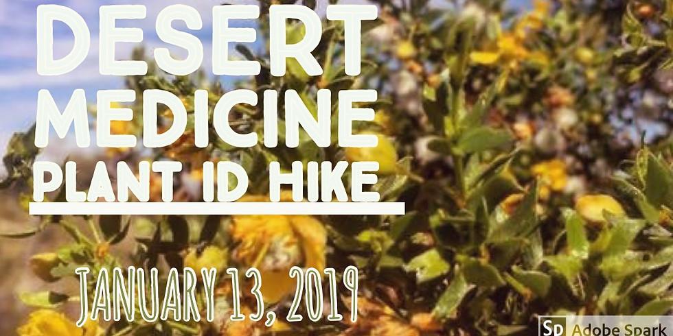 Desert Medicine Plant ID Hike.