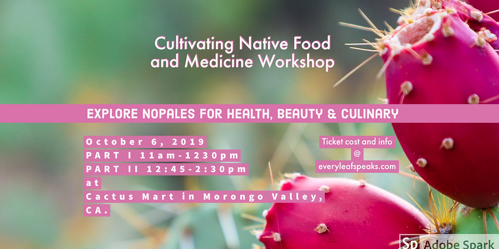 Cultivating Native Foods and Medicine. Prickly Pear Cactus and Fruit Workshop Nopales & Tuna