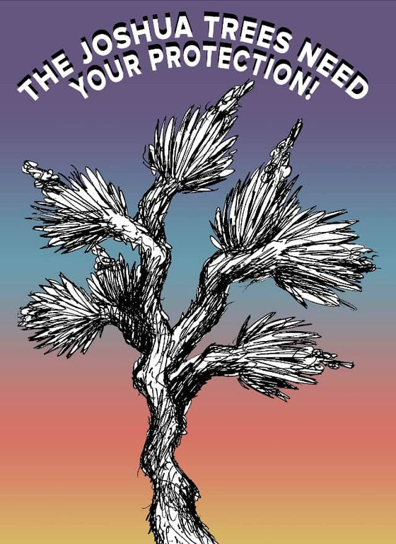 The Joshua Trees Need Your Voice of Protection.