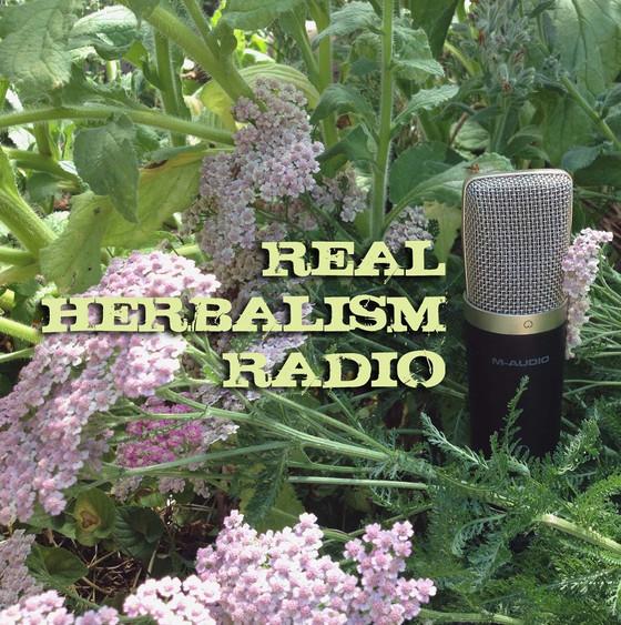 Every Leaf Speaks chatswith The Practical Herbalist on Real Herbalism Radio.