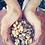 Thumbnail: Ethically Wildcrafted Piñon Pine Resin 4oz