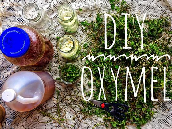SPICY NETTLE OXYMEL Recipe