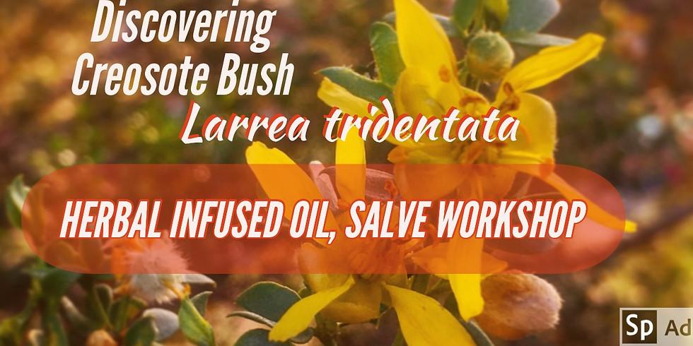 DISCOVERING CREOSOTE BUSH, HERBAL INFUSED OIL & SALVE WORKSHOP