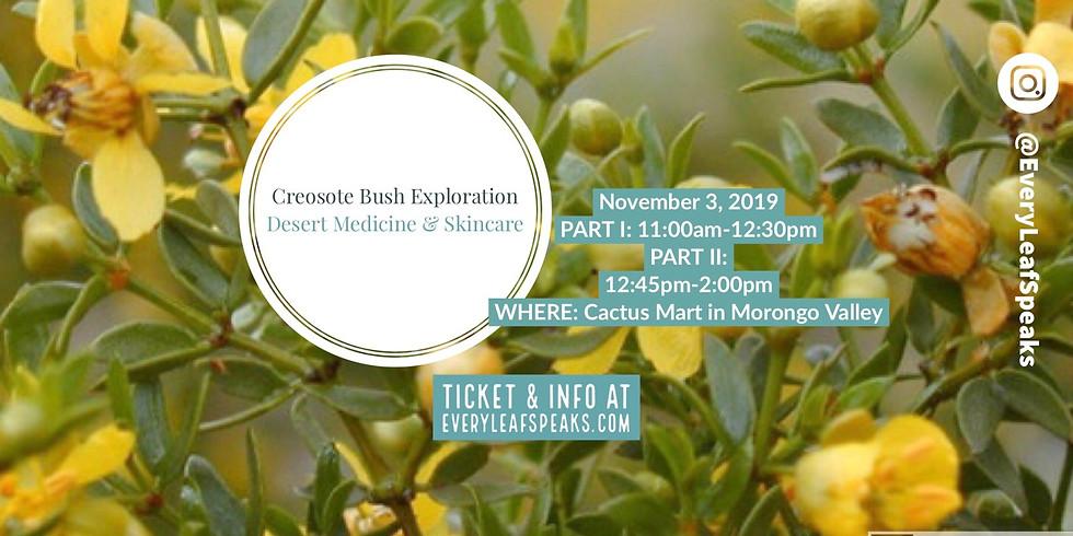 Creosote Bush Exploration, Desert Medicine & Skincare