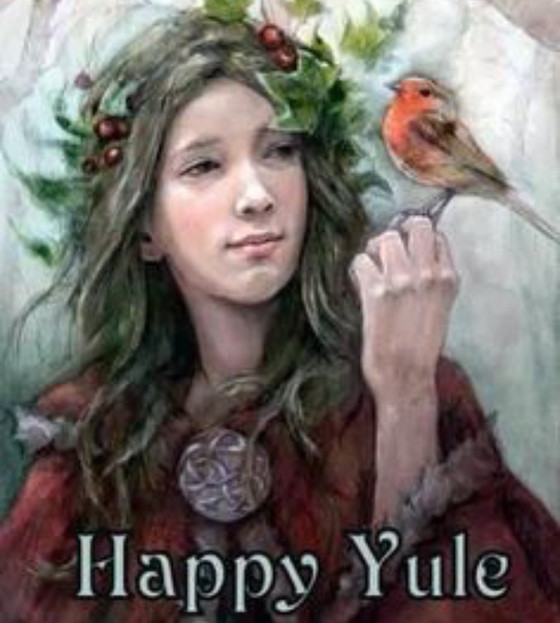 Merry Yule Tidings - Winter Solstice from Jtree.