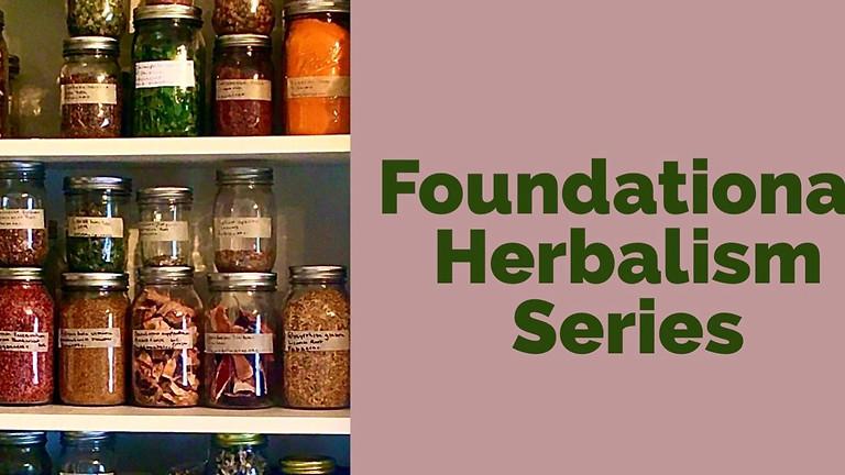 Foundational Herbalism Series
