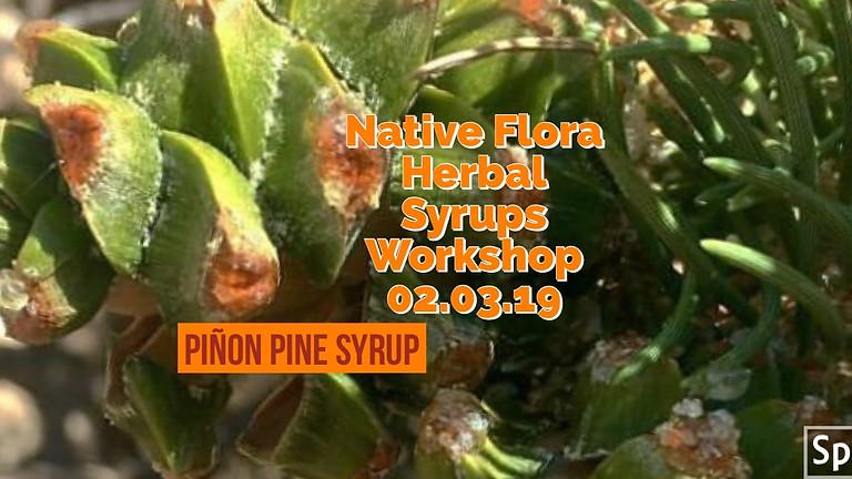 Piñon Pine, Native Flora Herbal Syrups Workshop