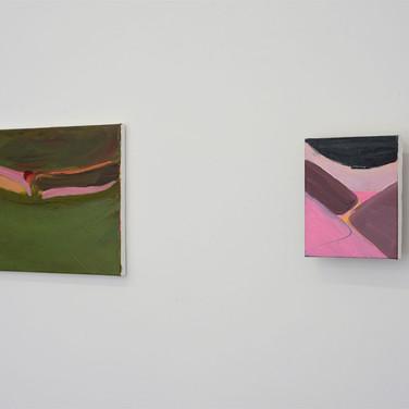 Iris Cintra, PINKGREEN Solo Show, 2019, Installation View, Tel Aviv