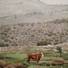 Durar Bacri, Golan Heights