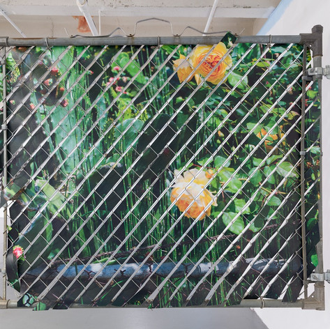 "Glen Wilson, Frutas / Flores, 2016,  49""x57"", Mixed Media: Aluminum, Chain Link, Printed UV Polystyrene - front side"