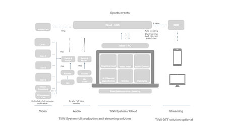 Diagram TiiVii copy.002.jpeg