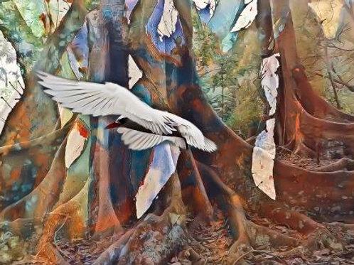 Forest Remnants Flight