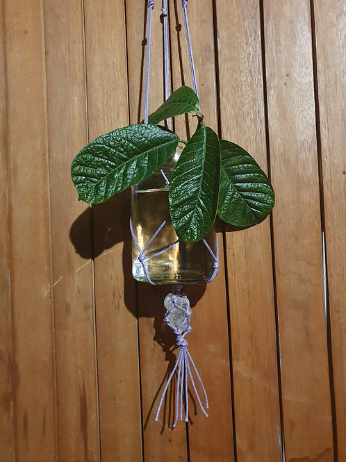 Clear Quartz Plant Hanger III (Medium)