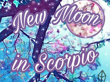 NEW MOON ◇ NOVEMBER 2020