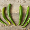 Thumbnail: Baklouti Green Chili Olive Oil