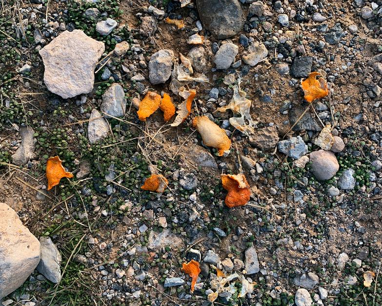Tangerine Peels (Red Rock Canyon)