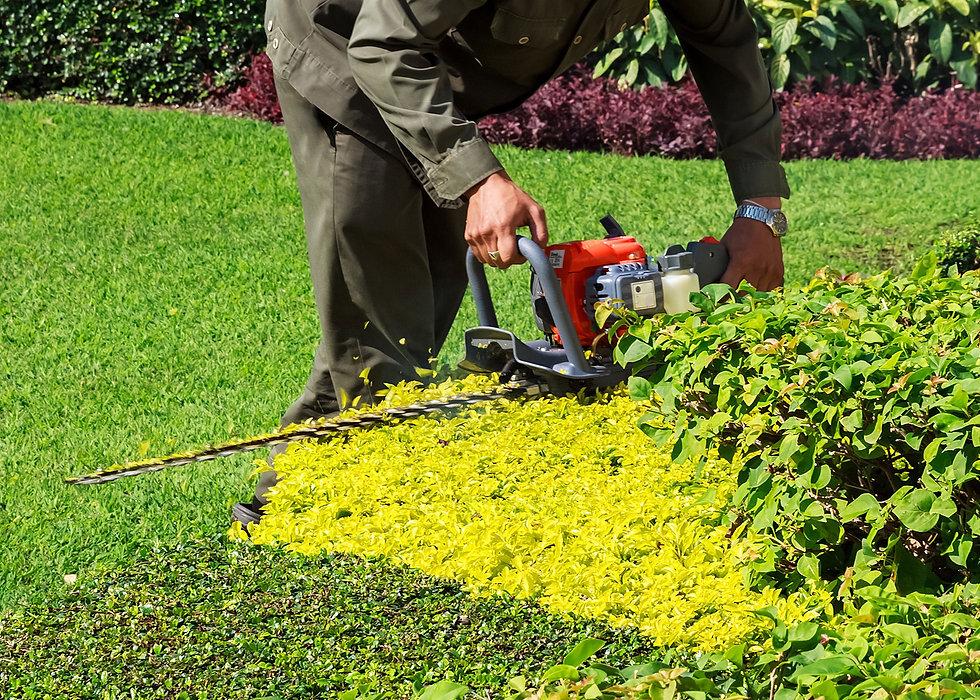 Landscaping, Lawn Fertilization Allen Park, Grosse Ile, Dearborn MI   Turf Concepts Landscape Management