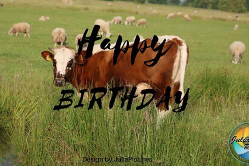 Verjaardagskalender koeien
