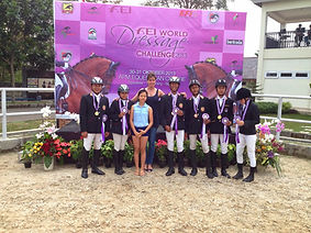 International coaching and training horses and riders