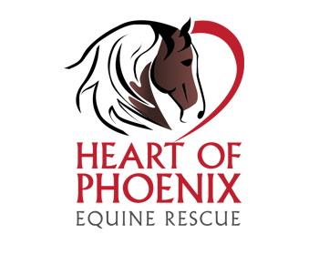 The new logo that appears around the farm, on the website, apparel, and merchandise. It even appears on a brand for the horses to track them once they are adopted.