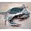 Thumbnail: Blue Crab