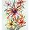 Thumbnail: Watercolor Flowers