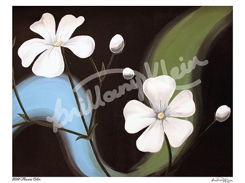 Wild Flowers' Color