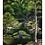 Thumbnail: Green Woods