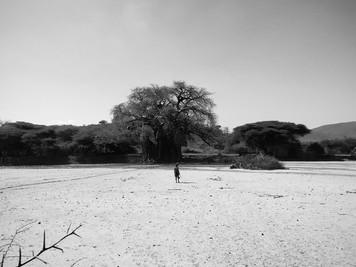 Tanzania, Tribu Hadzabe 2019