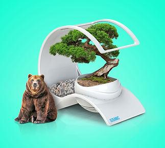 Ozeanic Pure Air, desinfecta y elimina olores de tu entorno.