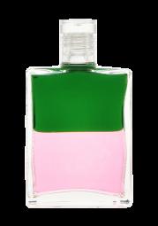21 | Grün/Pink