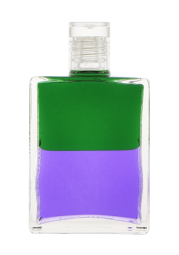 17 | Grün/Violett