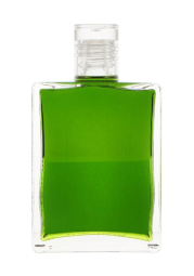 91 | Olivgrün über Olivgrün