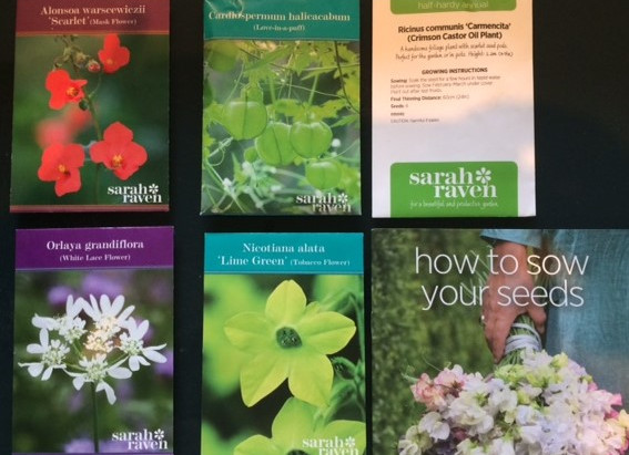 Hardy Annuals
