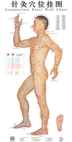 Charte d'acupuncture