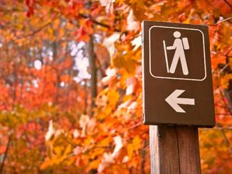 Apprivoiser l'automne pour bien vivre l'hiver: 5 conseils saisonniers