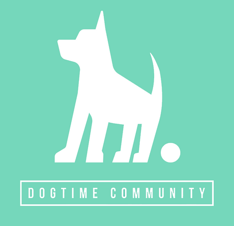 dogtime-community.png