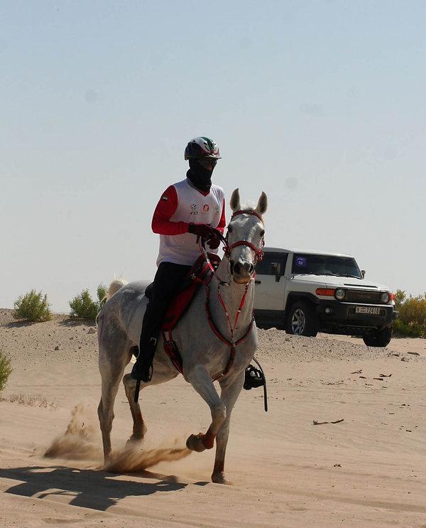 Siam du Barthas Elu Meilleur cheval au Monde à la Ranking List
