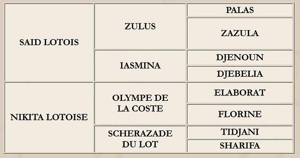 Origines de Niki Lotois (Saïd x Nikita Lotoise / Olympe de la Coste)