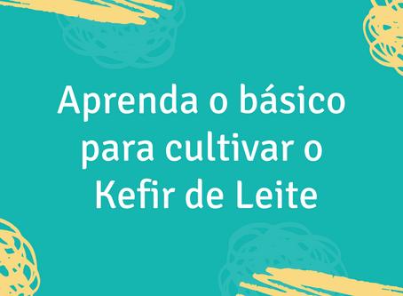 Aprenda o básico para cultivar o Kefir de Leite