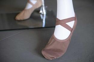 Adult Ballet Shoe Tones So Danca.jpg