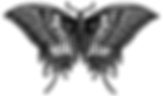 SwallowTailButterFly_v1_SMALL.png