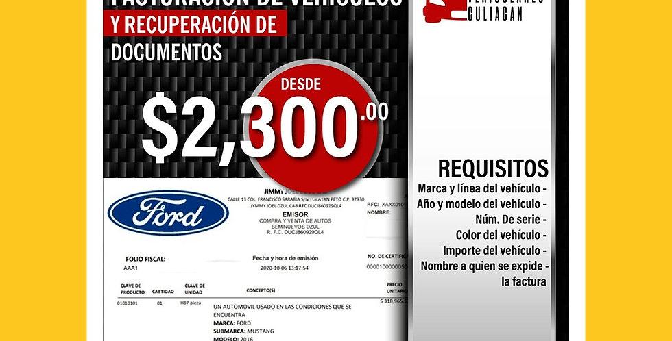 Facturación de Vehiculos y Recuperación de Documentos