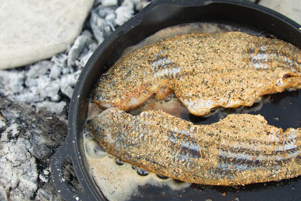Tacos de poissons