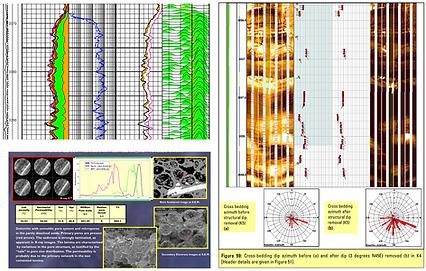 Petrophysics, well logs, imaging logs, NMR, GeoData