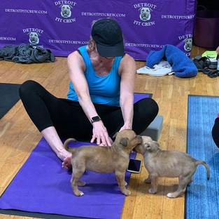 Puppy-Yoga-23.jpg