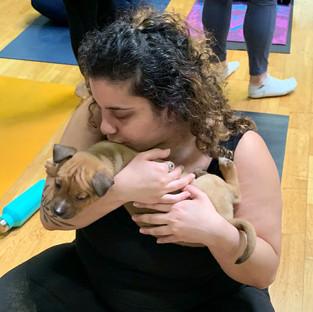 Puppy-Yoga-5.jpg