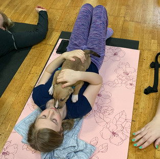 Puppy-Yoga-11.jpg