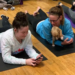 Puppy-Yoga-28.jpg